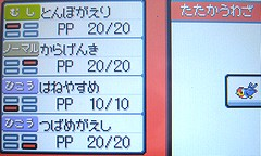 P091101f