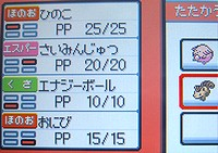 P091107c